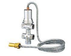 Temperature safety relief valve